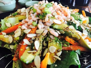 Shrimp and Avocado Salad with Sesame Ginger Dressing 3
